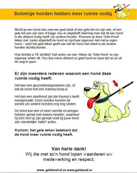 Gele-Hondposter